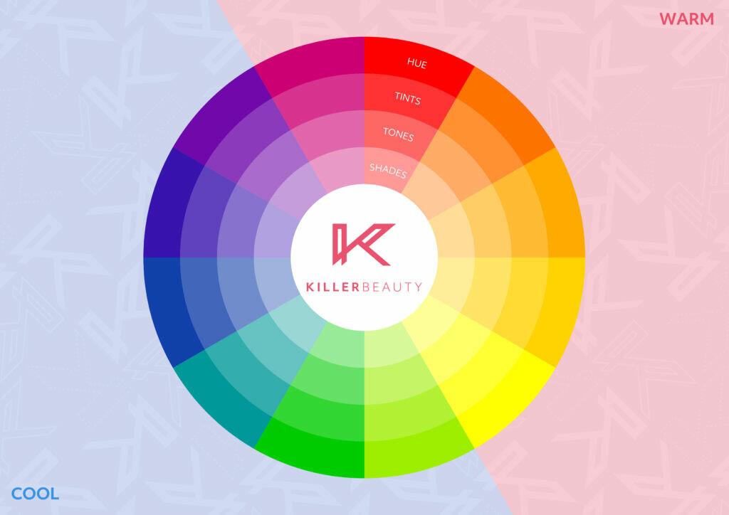 Permanent makeup colour theory wheel